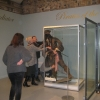 Setting Mr Sparrow in his display cabinet