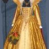 Elizabeth I Gold Silk Gown